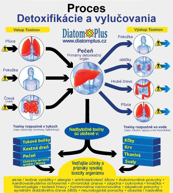 proces detoxikacie